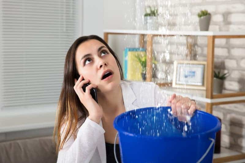 woman holding a bucket to stop a water leak while calling an emergency plumber in sydney