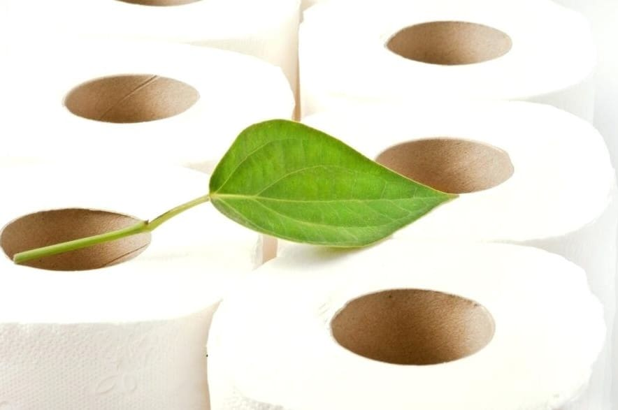 ecofriendly toilet paper