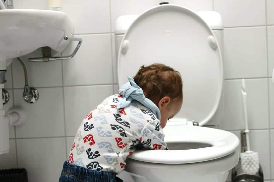 recover items flushed down the toilet